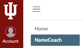 image displaying NameCoach in the course navigation menu of a Canvas class